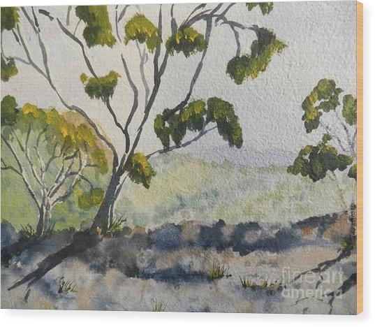 Natural Park A Shoalhaven Wood Print