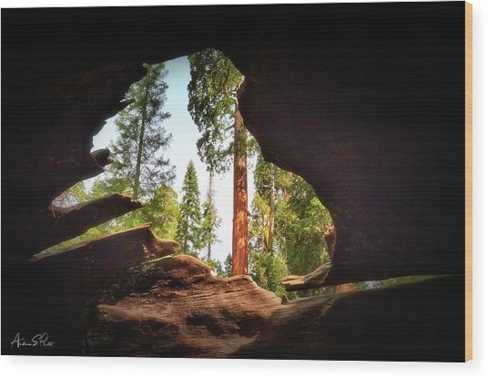 Natural Window Wood Print