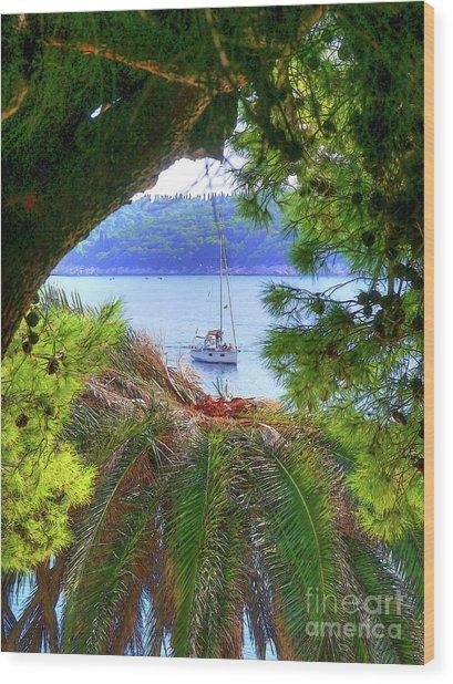 Nature Framed Boat Wood Print