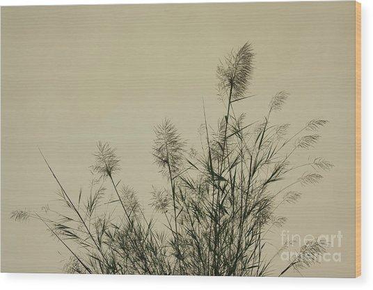 Nature Scenery In Lijiang China Wood Print by Julia Hiebaum