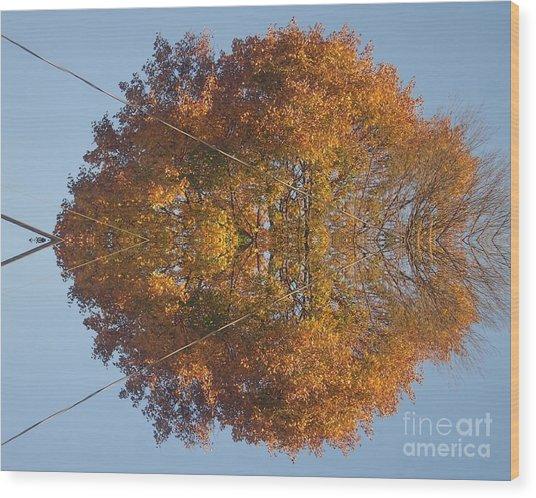 Nature Unleashed Wood Print