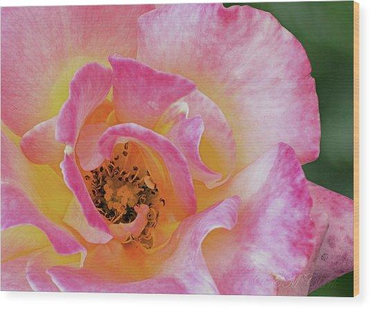 Nature's Beauty Wood Print