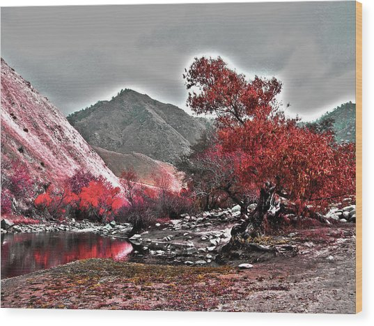 Wood Print featuring the photograph Nature's Canvas by Pacific Northwest Imagery