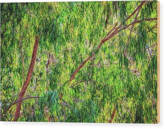 Natures Greens, Yanchep National Park Wood Print