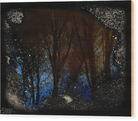 Natures Looking Glass 2 Wood Print