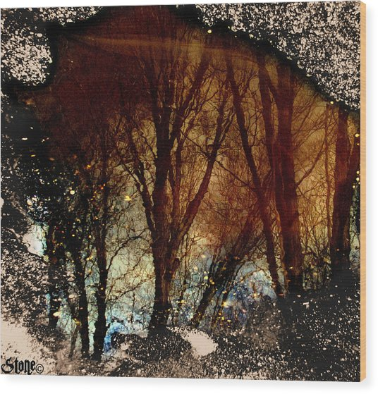 Natures Looking Glass 3 Wood Print