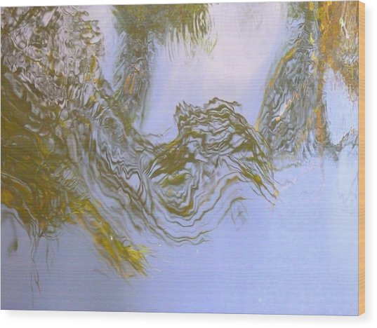 Natures Mirror Wood Print by Florene Welebny