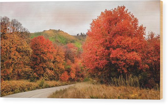 Nature's Palette Wood Print