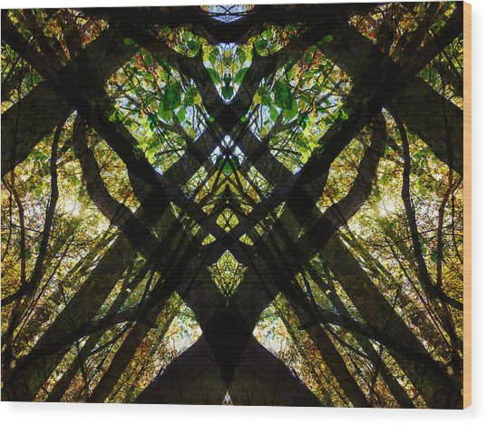 Natures Stain Glass Wood Print