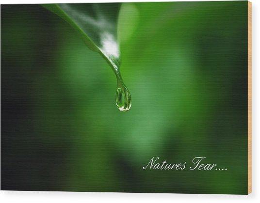 Natures Tear Wood Print