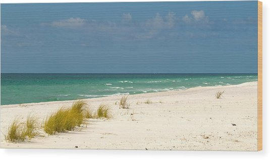 Navarre Beach Florida Wood Print