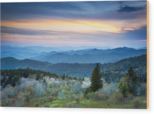 Nc Blue Ridge Parkway Landscape In Spring - Blue Hour Blossoms Wood Print
