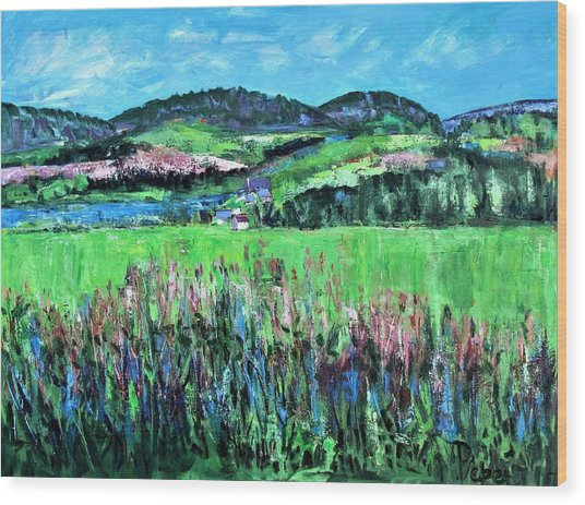 Near Cooperstown Wood Print