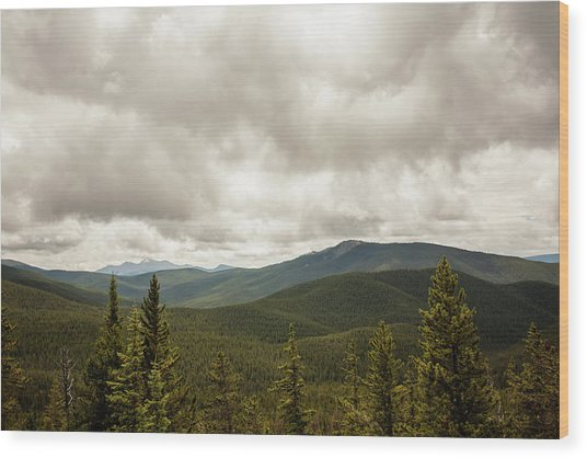 Near Monarch Pass At The Continental Divide Wood Print