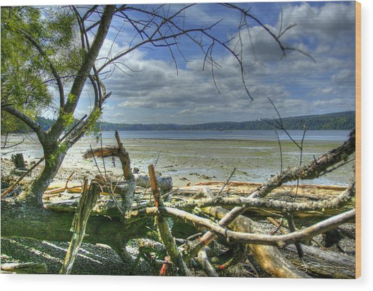 Near Port Gamble Wood Print
