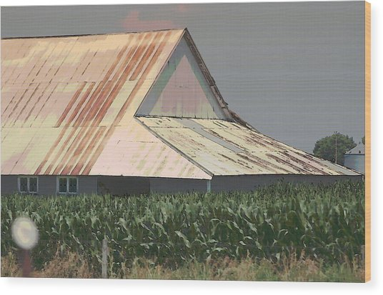 Nebraska Farm Life - The Tin Roof Wood Print
