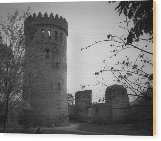 Nenagh Castle County Tipperary Ireland Wood Print