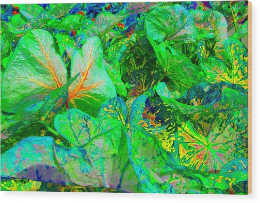 Wood Print featuring the photograph Neon Garden Fantasy 1 by Marianne Dow