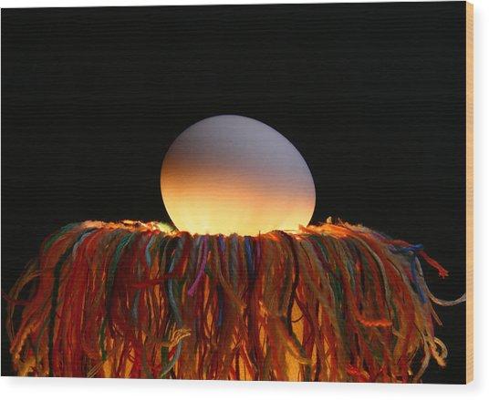 Nest Wood Print by Mark  Ross