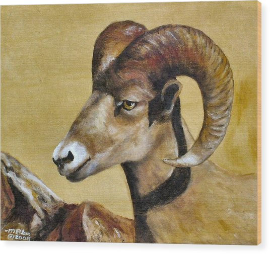 Nevada Bighorn Wood Print by Merle Blair
