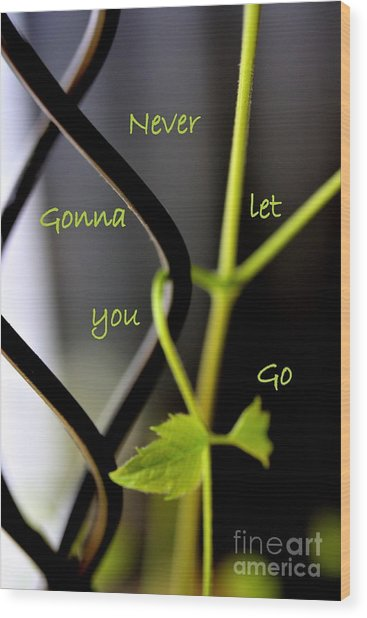 Wood Print featuring the photograph Never Gonna Let You Go by Patti Whitten