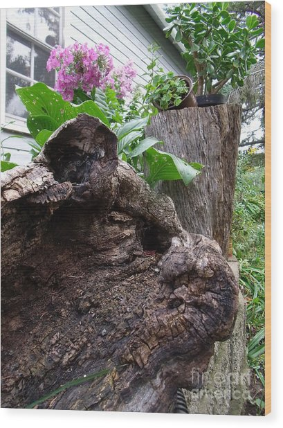 New And Old Wood Print by The Stone Age