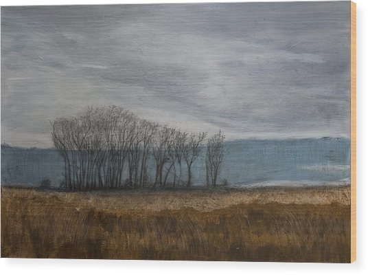New Buffalo Marsh Wood Print