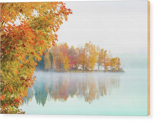 New England Fall Colors Of Maine Wood Print