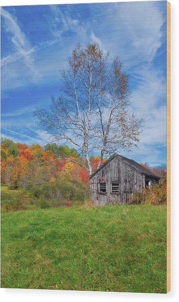 New England Fall Foliage Wood Print