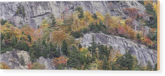 New England Foliage Burst Wood Print by Expressive Landscapes Fine Art Photography by Thom