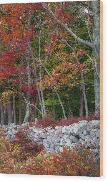 New England Stonewall Wood Print