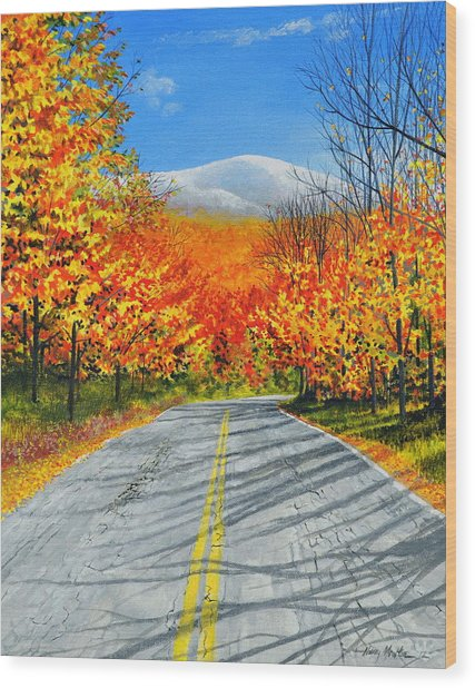 New Hampshire Wood Print
