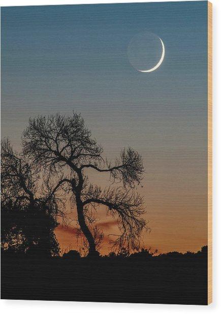 New Moon At Beaver Creek, Arizona, I Wood Print by Dave Wilson