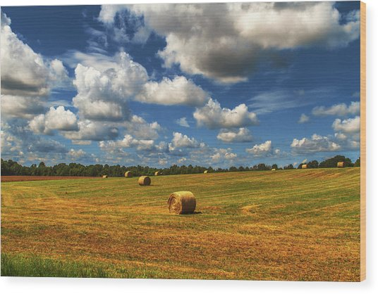 Wood Print featuring the photograph New Mowed Hay  by Barry Jones