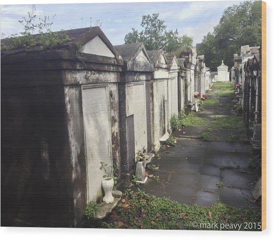 New Orleans Cemetery Wood Print