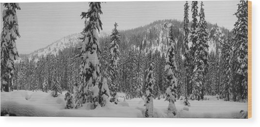 New Snow Wood Print by Mark Camp