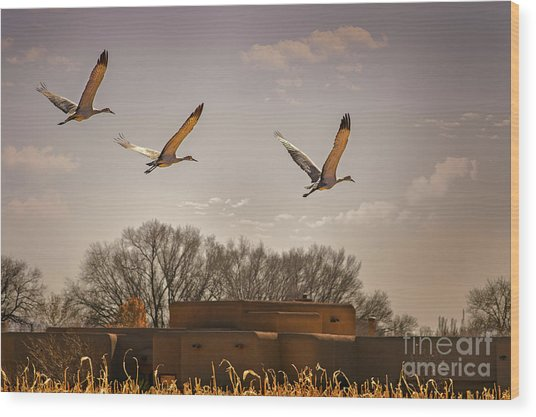 Flight Of The Cranes Wood Print