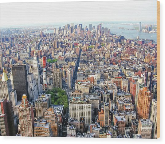 New York Aerial View Wood Print
