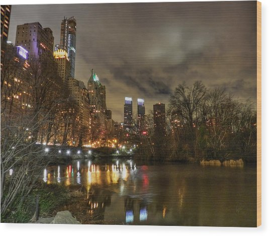 Wood Print featuring the photograph New York - Central Park 008 by Lance Vaughn