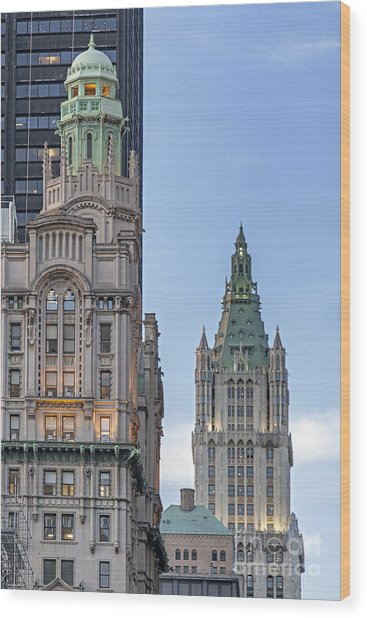 Wood Print featuring the photograph New York Woolworth Building  by Juergen Held
