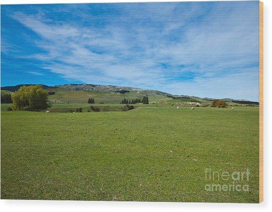 New Zealand Green Rolling Hills Wood Print by John Buxton