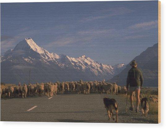 New Zealand Mt Cook Wood Print