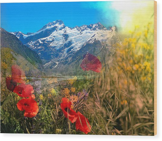 New Zealand Southern Alps Montage Wood Print
