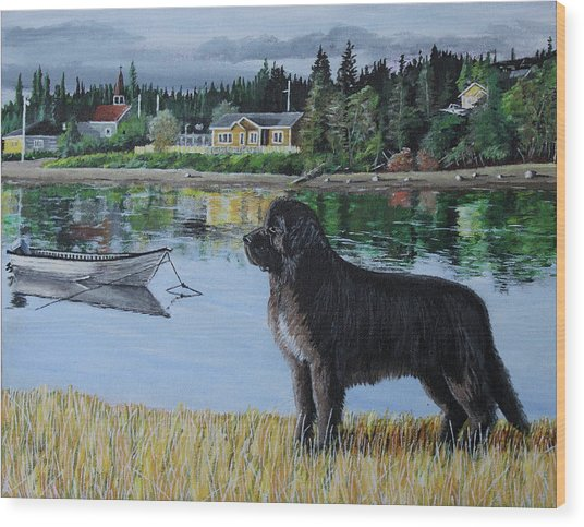 Newfoundland In Labrador Wood Print