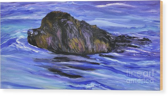 Newfoundland Oil Painting Wood Print by Mary Jo Zorad