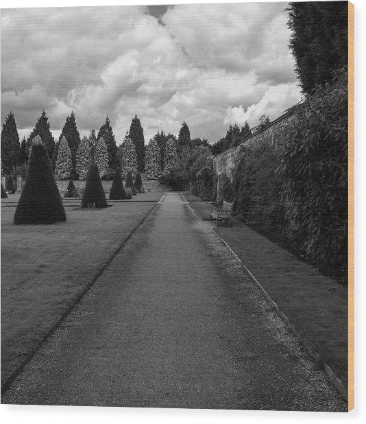 Newstead Abbey Country Garden Gravel Path Wood Print