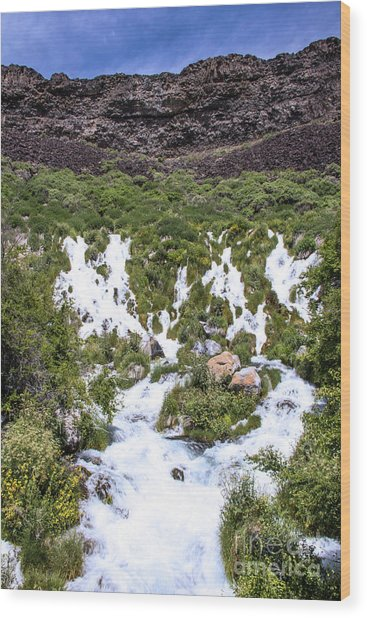 Niagra Springs Idaho Journey Landscape Photography By Kaylyn Franks  Wood Print