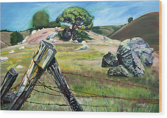 Nicasio Fence Post Wood Print by Colleen Proppe