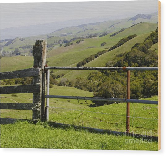 Nicasio Overlook Wood Print
