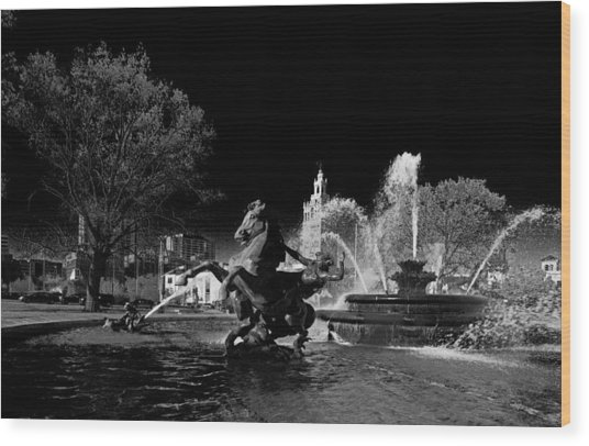 Nichols Fountain Wood Print